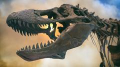 Tyrannosaurus Rex Dinosaur Fossil Smoke - stock photo