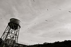 Old rusty water tower black and white seagulls Alcatraz San Francisco - stock photo