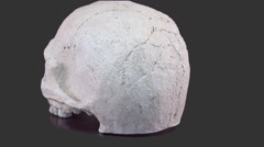 Skull of an Alpha channel Stock Footage