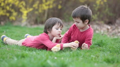 Two cute preschool boys, caressing little baby chick in the park, springtime Stock Footage