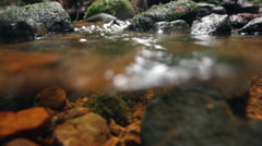 Water flowing down a rainforest stream in the Ecuadorian Amazon.  Stock Footage