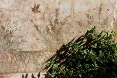 Fresco in villa oplontis Stock Photos