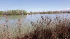 Lakeside in spring at Bekaa, Lebanon - stock footage
