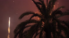 Fireworks exploding in background of palm tree on summer evening 4k Stock Footage