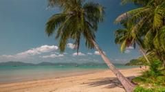 Summer day phuket palm beach panorama 4k time lapse thailand Stock Footage