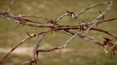 Agriculture barb wire fence. A barbed wire fence Stock Footage