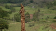 Agriculture Barb wire fence. Stock Footage
