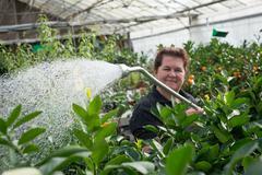 Smiling Woman Gardener Watering Plants in a Nursery Greenhouse Kuvituskuvat