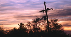 Stock Video Footage of 4K 24p Cine dramatic colors post sunset behind tel pole trees time lapse