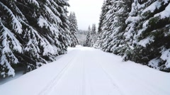 Steadycam shot on the snowy forest path Stock Footage