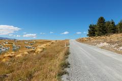 Empty rural road in fine day in new zealand Kuvituskuvat
