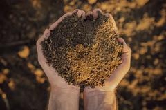 Farmer holding pile of soil on fertile agricultural land Stock Photos