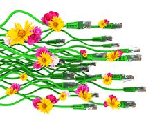 Computer cables with flowers - stock illustration