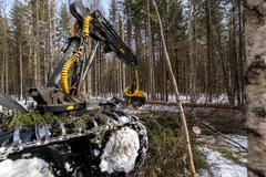 Timber industry. Logger cuts tree in winter forest - stock photo