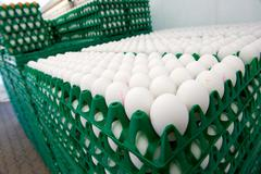 Eggs in crates Stock Photos