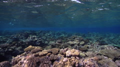 Ocean scenery surge halts and moves the camera across shallows, on very shallow Stock Footage