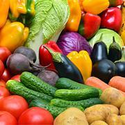 Crop of vegetables. Stock Photos
