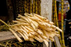 Fresh sugarcane sticks recently peeled with machete stabbed into top of pile - stock photo