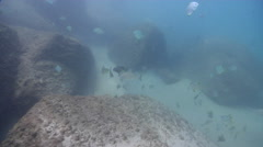 Ocean scenery drift along the wall, then camera turns to face current and hides - stock footage