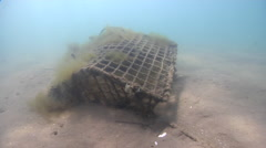 Derelict crab pot, fish trap, underwater, marine pollution, HD, UP31569 Stock Footage