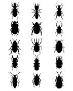 silhouettes of bugs - stock illustration