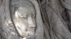 Buddha head Stock Footage