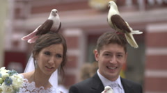 Pigeons on the head groom and bride Stock Footage