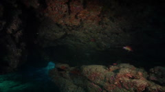 Ocean scenery in cavern, HD, UP31730 Stock Footage
