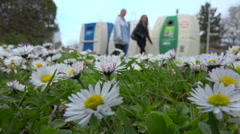 Daisy flowers and recycling public containers, bins - France Stock Footage