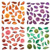 Dried medley potpourri leaves isolated - stock photo