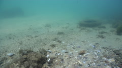 Ocean scenery changes direction to investigate and circle discarded mooring, 44 Stock Footage