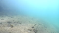 Ocean scenery fast swimover with the current, wooden platform, derelict jetty, Stock Footage