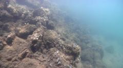 Ocean scenery on rock wall, HD, UP31786 Stock Footage