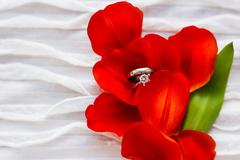 Pair of wedding and engagement rings with diamond on red tulip. Natural backg - stock photo