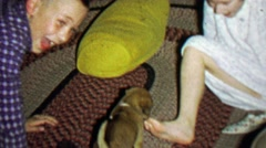 1967: Kid plays cute new puppy kisses toes is freaking adorable. Stock Footage