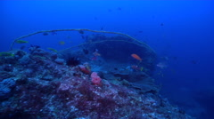Ocean scenery fouled derelict anchor rope, on rocky reef, HD, UP31957 Stock Footage