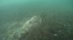 Ocean scenery on river mouth rock wall, HD, UP32223 Stock Footage