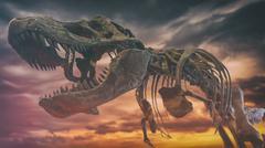 Tyrannosaurus Rex Dinosaur Fossil Extinction - stock photo