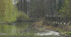 Forest Landscape Bridge in Springtime Park Sunny Day Small River Stony Bank Stock Footage
