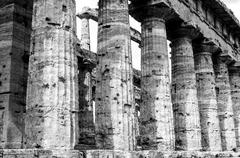 Temple of Neptune in black and white the famous Paestum archaeological  site. - stock photo