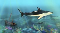 Shark Swimming - stock illustration