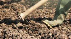 Man hoeing vegetable garden soil Stock Footage