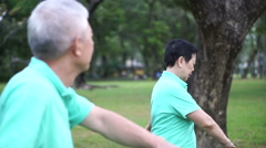 Asian Senior Elderly couple Practice Taichi, exercise outdoor in the park Stock Footage