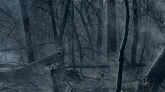 Eerie steaming forest by moonlight - stock footage
