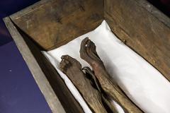 Human Mummy View - stock photo