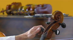 The lutier tune the four strings of cello Stock Footage