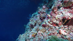 Ocean scenery looking down over the wall into the deep, on seaward wall, HD, Stock Footage