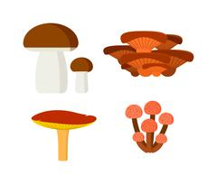 Mushrooms vector illustration set different types isolated on white background - stock illustration