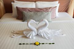 the figures of swans sleeping on bed - stock photo
