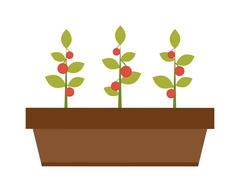 Young green plant seedling growing in a soil flat vector - stock illustration